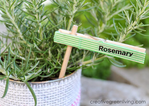 Clothespin Plant Markers