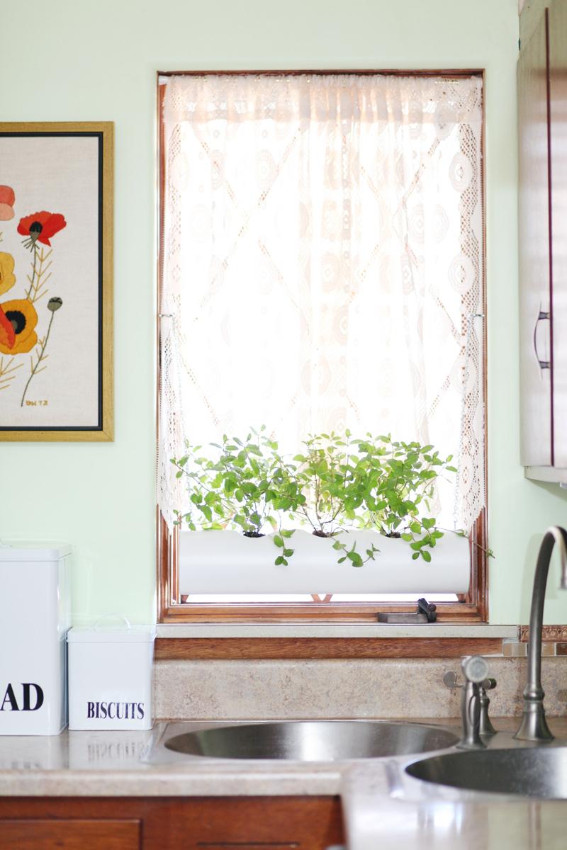 PVC Window Herb Planter