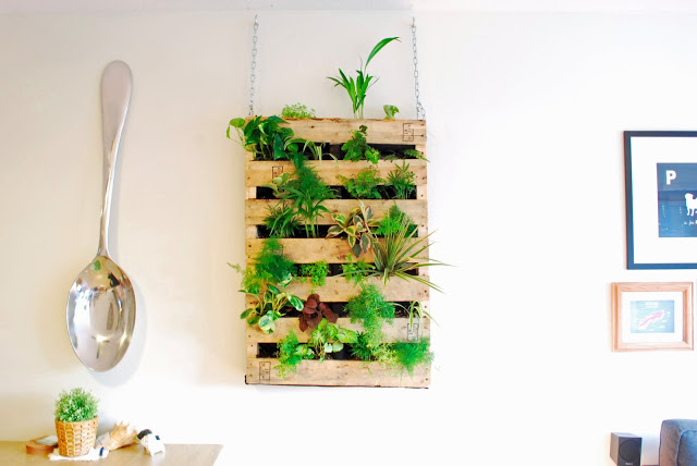 Create This Awesome Indoor Living Wall Out Of An Old Shipping Pallet!