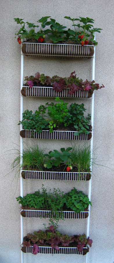 Spice Rack Planter