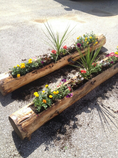 Great Turn A Log Into A Rustic Planter