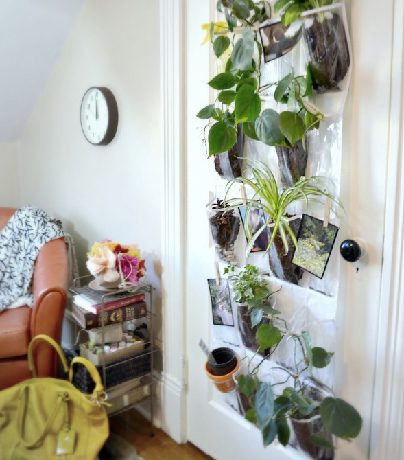 Vertical Garden Wall Indoor