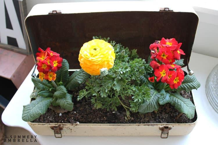 Repurposed Toolbox Flower Planter