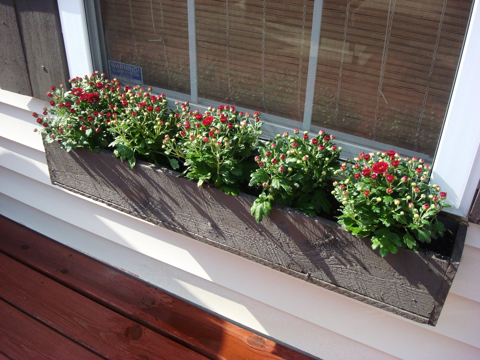 Cheap & Easy Window Box