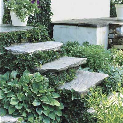 Float Steps on Foliage