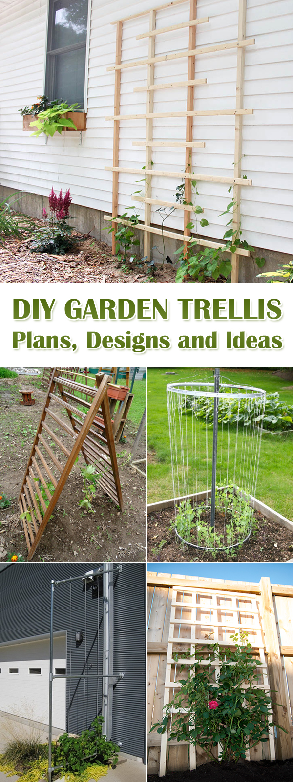 12 DIY Garden Trellis Plans, Designs and Ideas