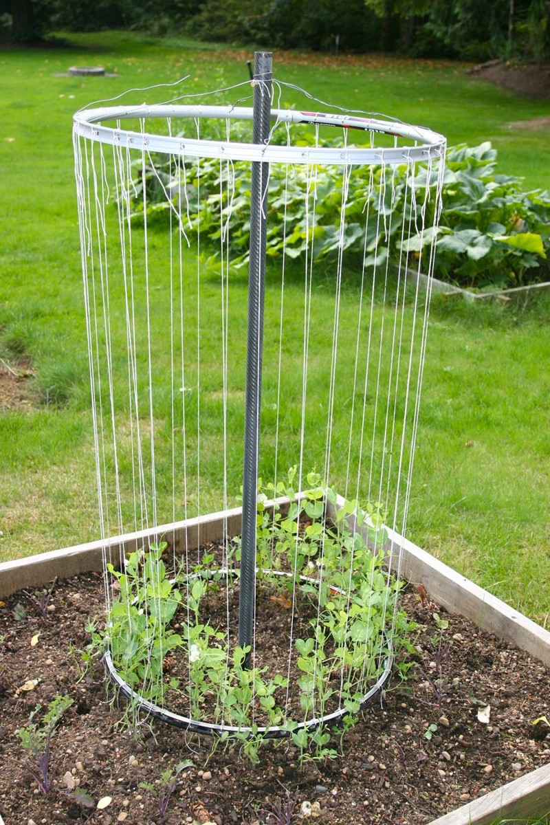 Diy Garden Trellis Ideas Part - 20: Cool DIY Ideas