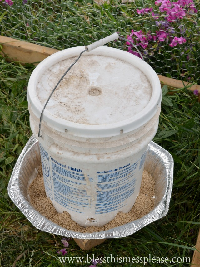 Chicken Feeder from 5-Galon Buckets