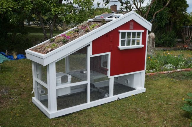 15 Amazing DIY Chicken Coop Plans, Designs and Ideas