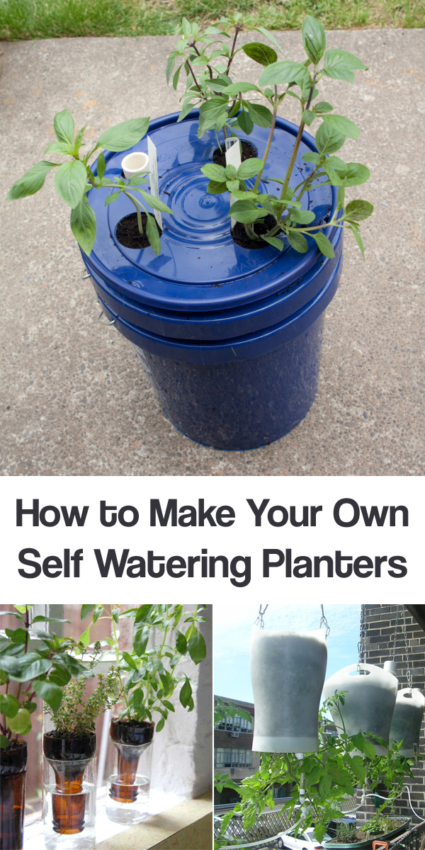 Learn How To Make Your Own Self Watering Planters With
