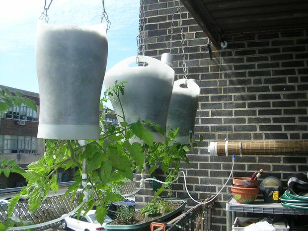 Upside-Down Hanging Self-Watering