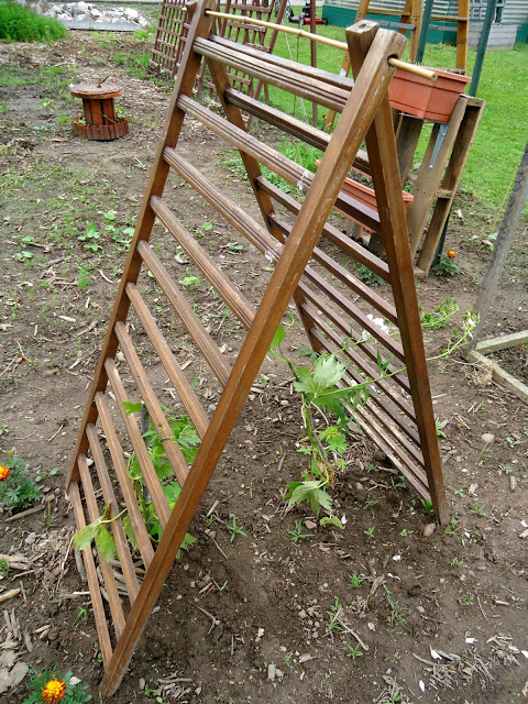 Use The Side Of An Old Crib As A Trellis