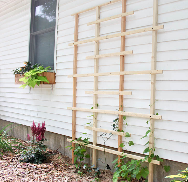 Attractive Cedar Trellis