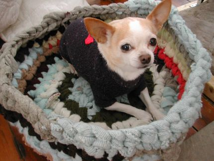 Pet Bed from Recycled Sweaters