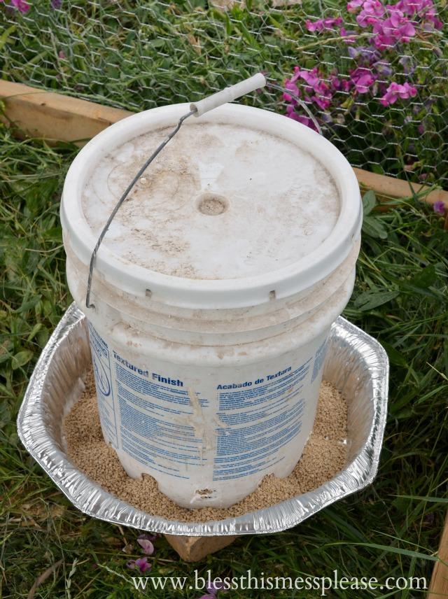 Chicken Feeder from 5-Gallon Bucket