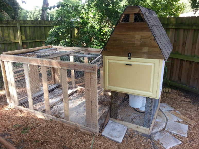 Chicken Coop for Less Than $50