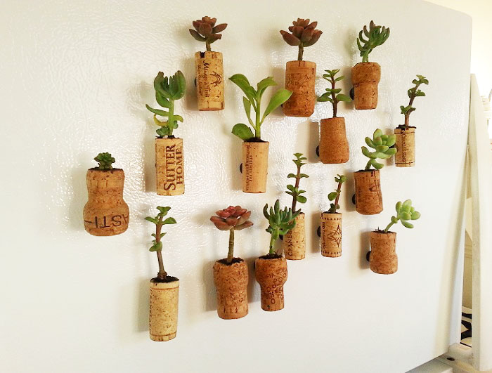 Little Cork Planters