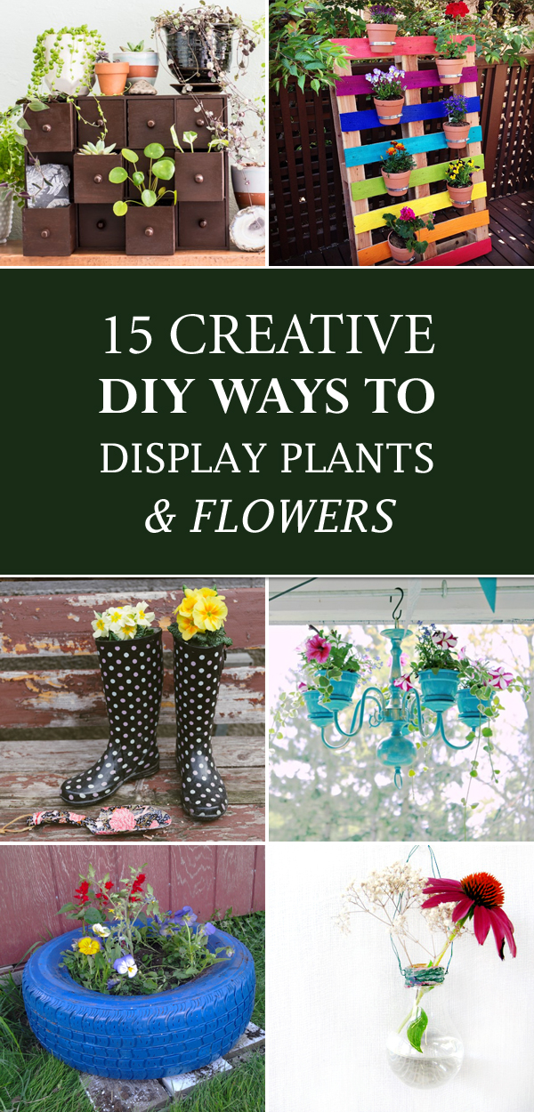 15 Creative DIY Ways To Display Plants and Flowers