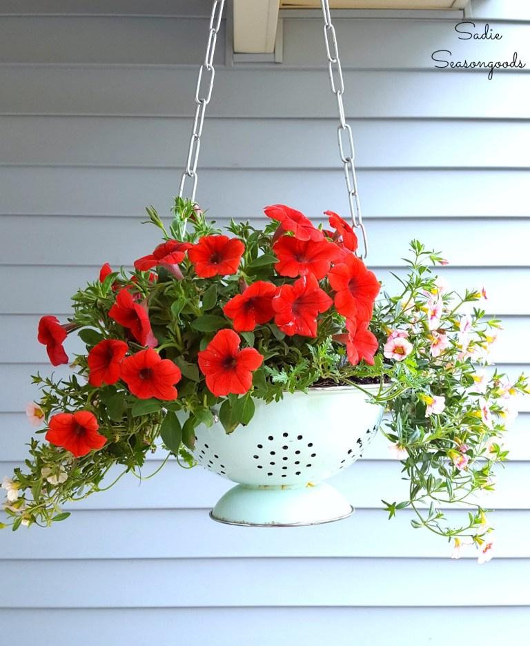 Hanging Colander Planter