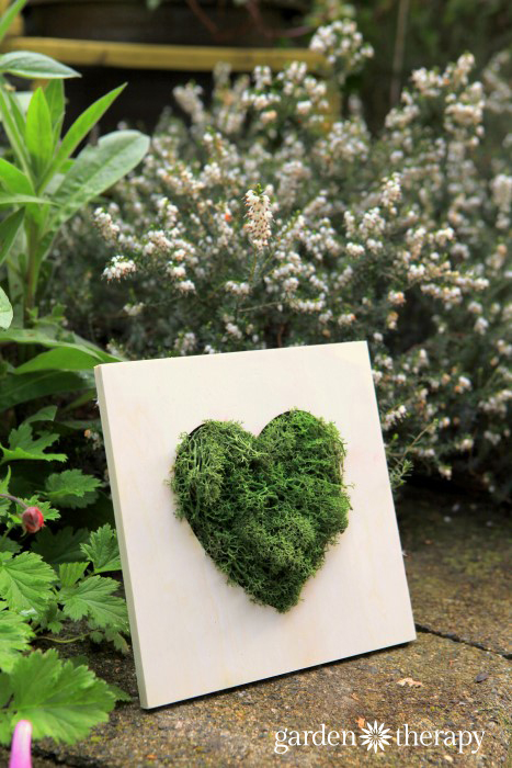 Heart Moss Art