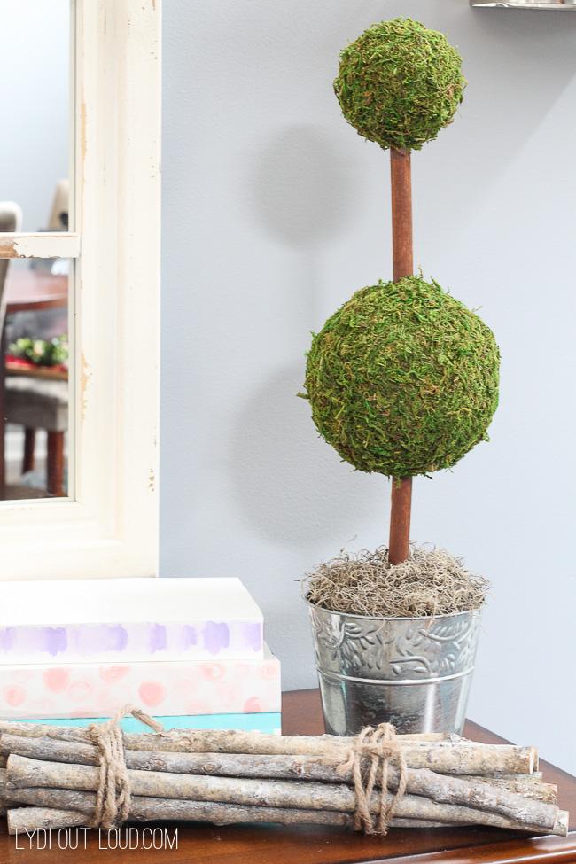 Moss Topiary