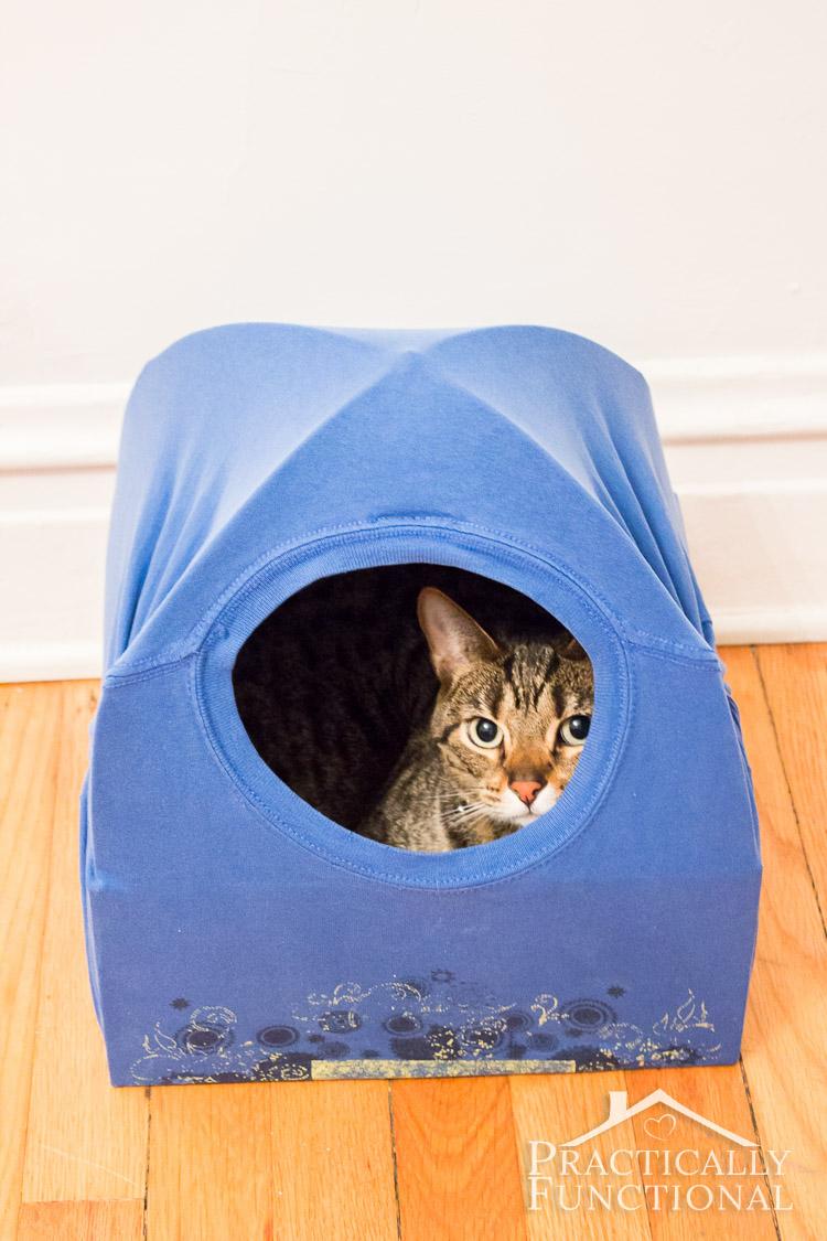 Cat Tent Bed