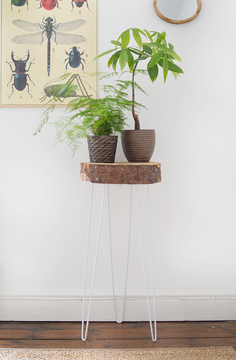 Hairpin and Wood Slice Plant Stand