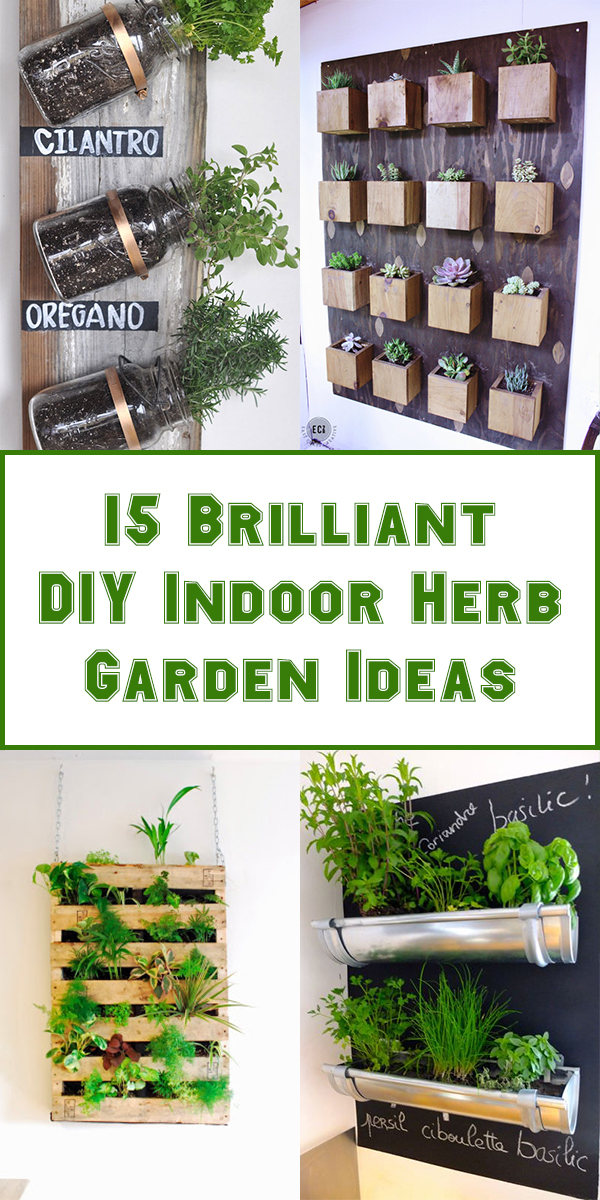 15 Brilliant DIY Indoor Herb Garden Ideas